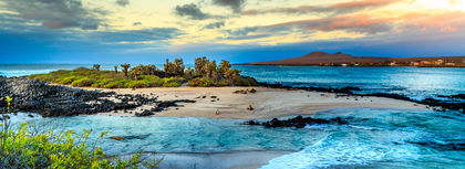 Dreaming of the Galapagos Islands?