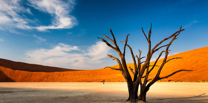 Diverse Namibia Tours holiday experience