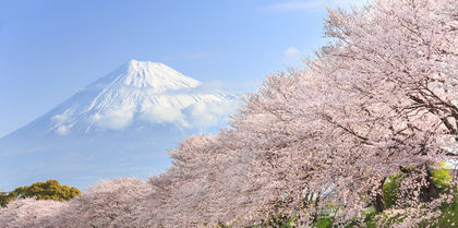 Trails of Japan Tours, independent and couples holiday experience