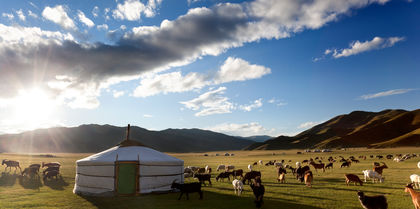 Mongolia Experience Tours and flights holiday experience