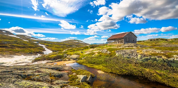 Best of Norway Tours holiday experience