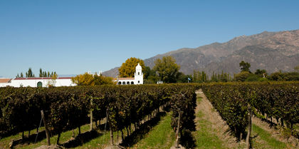 Wines of Argentina & Chile Tours holiday experience