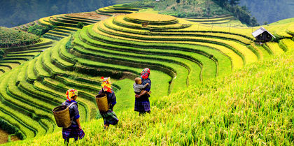 Colours of Vietnam   Tours, couples and flights holiday experience