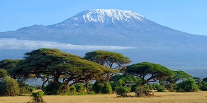 Kenya & Tanzania Safari Tours and flights holiday experience