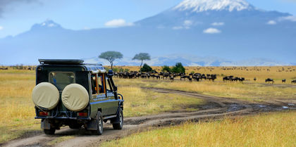 Magical Kenya Tours, family and couples holiday experience