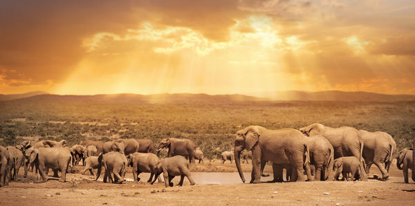 Kruger to Cape Town Tours and flights holiday experience