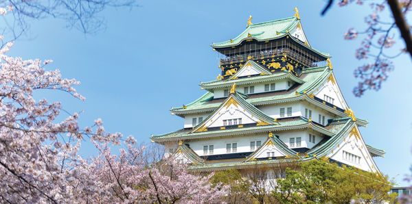 Beauty of Japan Tours, couples and flights holiday experience