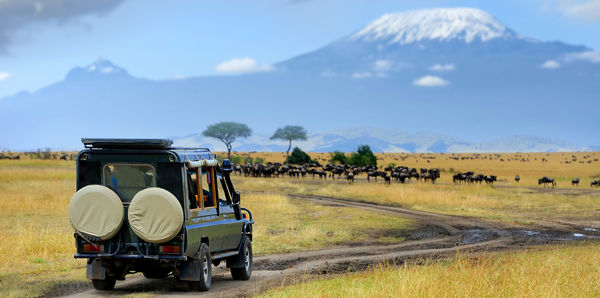 Incredible Kenya   Tours, couples and flights holiday experience
