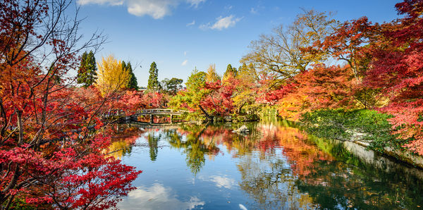 Discover Japan Escorted Tour Tours, couples and rail holiday experience